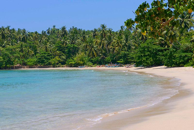 Blue Heights The Surf Villa in Hiriketiya, Sri Lanka